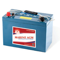 Lion Premium 100AH AGM Deep Cycle Battery
