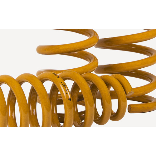 Tough Dog Rear Coil Springs - Nissan Pathfinder R51
